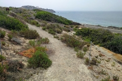 crystal-cove-state-park-hiking-trail