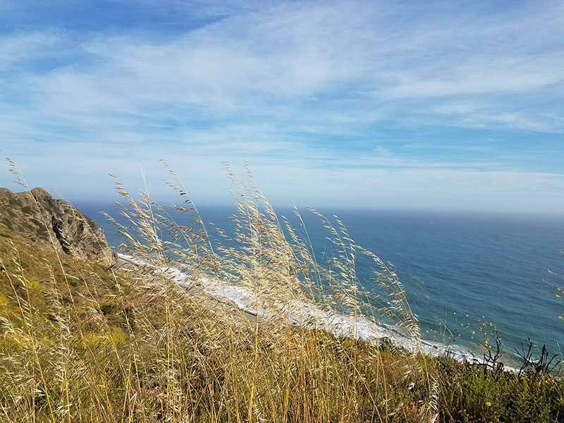 Point Mugu State Park Sycamore Canyon Campground Rv Site